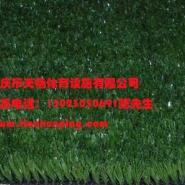 重庆足球场人造草坪图片