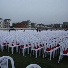 供应济南红色椅子济南白色椅子贵宾椅