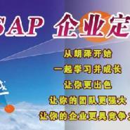 SAP企业定制培训图片