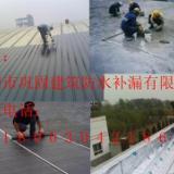 供应博罗县泰美建筑防水补漏工程惠州巩固建筑防水