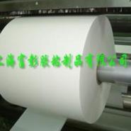 供应120g白格双面离型纸