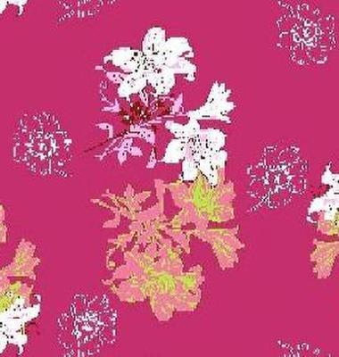 印花磨毛布图片/印花磨毛布样板图 (1)