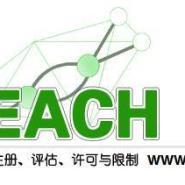 广东湛江第三方检测提供REACH图片