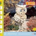 3D木制立体拼图拼版猫头鹰图片