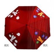 雨伞爱情伞图片