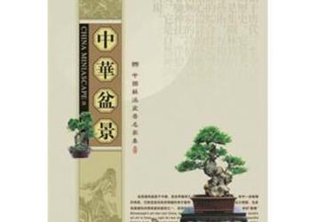 北京定制台历挂历-台历挂历印LOGO图片