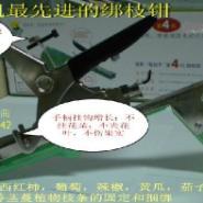 绑枝机绑枝钳山西省农用工具生产厂图片