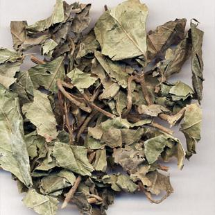 矮地茶中药材