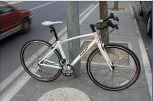 2010新款捷安特OCRW公路自行车图片