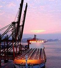 供应山东济宁发至海口花生米大豆等油料作物运输 便宜的海运价格