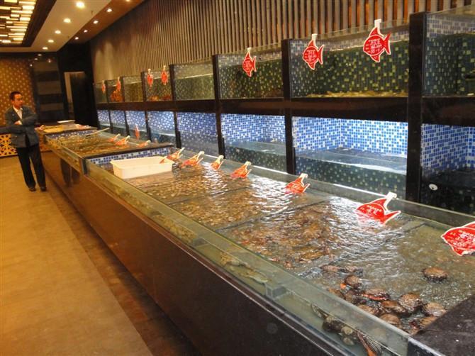 玻璃海鲜池图片