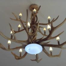 供应鹿角灯室内照明灯具纯梅花鹿角灯图片