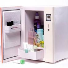 供应福瑞客化妆品冷藏箱美容冰箱供应商CC-9L