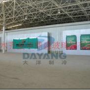 新疆最大的制冷保鲜设备公司图片