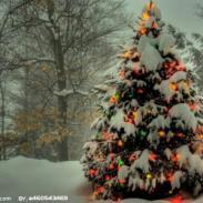 圣诞礼品空运出口哪家公司有优势图片