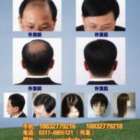 供应沧州黄骅定做假发、黄骅高端假发、黄骅补发、黄骅织发、黄骅发套