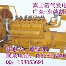 燃氣內燃機 燃氣內燃發電機組圖片