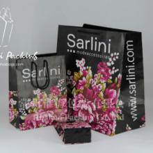 供应sarlini围巾购物袋_涂布牛皮纸袋_服装包装袋_饰品包装袋