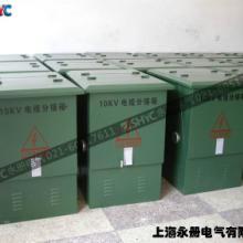 供应10KV电缆分接箱DFW环网柜 欧式电缆分接箱图片