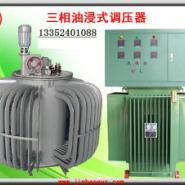 辽宁100KVA油式调压器图片