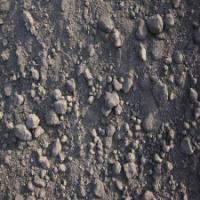 日照港高硫低灰进口美国石油焦