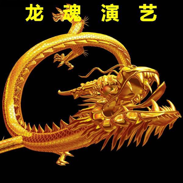 上海龙魂文化传播有限公司