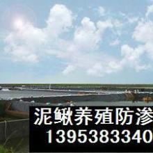 供应榆林哪里有卖养泥鳅专用的HDPE防渗膜?厂家直销批发