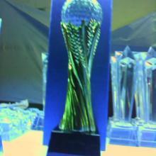 供应北京水晶奖杯刻字 定做金属奖杯 篮球 足球 高尔夫 排球奖杯定制图片