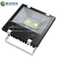 大功率LED200W集成泛光照树灯图片
