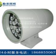 大功率LED36W双头壁灯图片