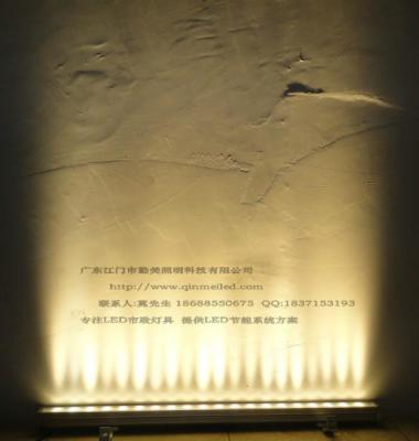 圆形洗墙灯图片/圆形洗墙灯样板图 (4)