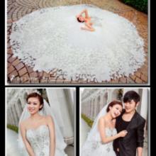 供应和田婚纱摄影--火爆特惠婚照套系
