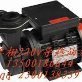 供应沃德单相220V高温油泵  单相220V高温油泵供应商