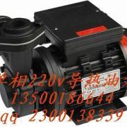 沃德单相220V高温油泵图片