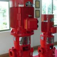 消防泵品牌图片