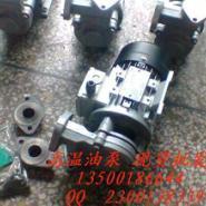 模温机热油泵图片