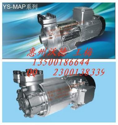 高温磁力泵图片/高温磁力泵样板图 (1)
