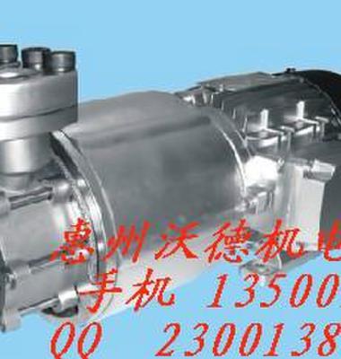 高温磁力泵图片/高温磁力泵样板图 (3)