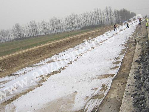 供应林芝土工布生产厂家产品价格哪里有卖的