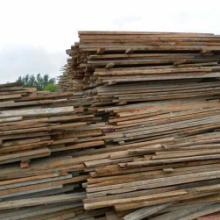 供应山东木材回收公司