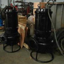 供应鲁达潜水污泥泵厂家,搅拌泥浆泵价格,耐磨采砂泵型号图片