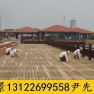 福建山樟木价格图片