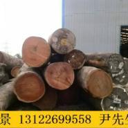 临沂柳桉木板材经销商图片