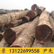 防腐菠萝格木生产厂家图片