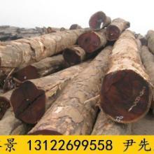 供应哪里有山樟木经销商 山樟木原木厂家 山樟木板材定做 防腐木批发图片