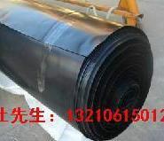 藕池HDPE土工膜价格图片