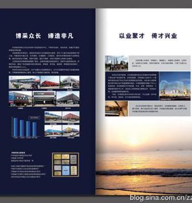 商城招商画册设计图片/商城招商画册设计样板图 (2)