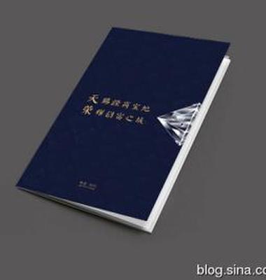 商城招商画册设计图片/商城招商画册设计样板图 (1)