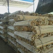 供应桉木木芯