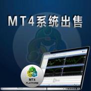 MT4黄金交易平台出租图片